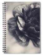 Striking In Black And White Spiral Notebook