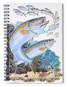 Striped Bass Rocks Spiral Notebook