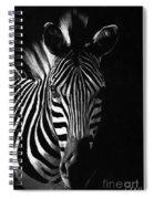 Striped Beauty Spiral Notebook