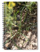Striped Cammo Spiral Notebook