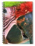 Striped Eye Spiral Notebook