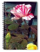 Striped Rose And Yellow 2 Spiral Notebook