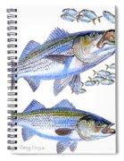 Stripers Spiral Notebook