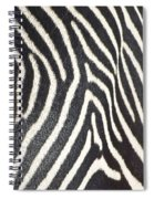 Stripes And Ripples Spiral Notebook