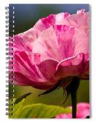 Stripes On  Roses Spiral Notebook