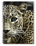 Strong Eyes Spiral Notebook