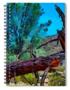 Struck By Lightning Spiral Notebook