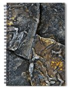 Structural Stone Surface Spiral Notebook