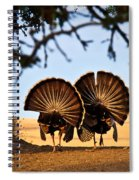Strutten Their Stuff Spiral Notebook