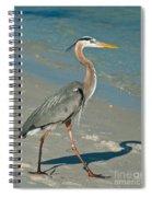 Strutting Heron Spiral Notebook