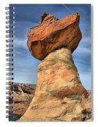 Stud Horse Hoodoo Spiral Notebook