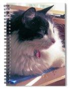 Studio Cat Spiral Notebook