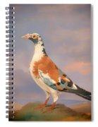 Study Of A Carrier Pigeon Spiral Notebook