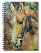 Study Of A Horse's Head Spiral Notebook