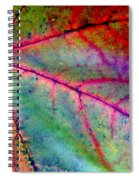 Study Of A Leaf Spiral Notebook