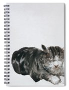 Study Of Cat Spiral Notebook