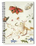 Study Of Insects And Flowers Spiral Notebook