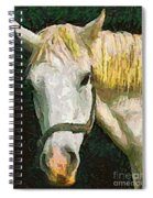 Study Of The Horse's Head Spiral Notebook