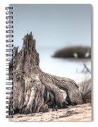 Stump Dragon Spiral Notebook
