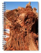 Stumped At Monument Valley Spiral Notebook