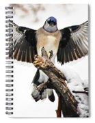 Stumped  Bluejay Spiral Notebook