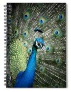 Stunning 1 Spiral Notebook