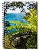 Subtropical Forest Of Abel Tasman Np In New Zealand Spiral Notebook