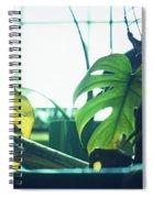Suburban Safari 4 Western Terrace Spiral Notebook