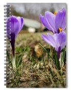 Suburban Spring Spiral Notebook