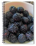 Succulent Blackberries  Spiral Notebook