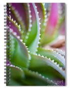 Succulent Swirls Spiral Notebook