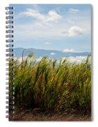 Sugar Cane Field - Maui Spiral Notebook