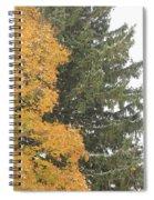 Sugar Maple And Evergreen Spiral Notebook