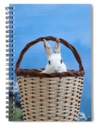 sugar the easter bunny 4 - A curious and cute white rabbit in a hand basket  Spiral Notebook