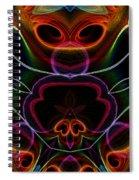 Suile Ciallmhar Spiral Notebook