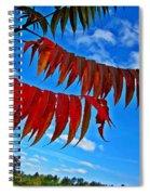 Sumac Red Spiral Notebook
