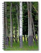 Summer Aspen Spiral Notebook