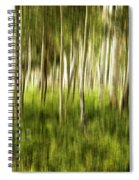 Summer Aspens Spiral Notebook