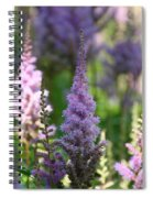 Summer Astilbe Spiral Notebook