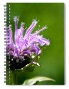 Summer Balm Spiral Notebook