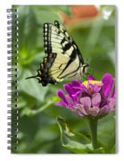 Summer Butterfly Spiral Notebook