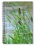 Summer Cattails In The Breeze Spiral Notebook