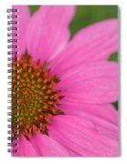Summer Coneflower Spiral Notebook