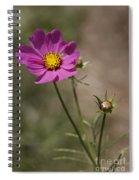 Summer Cosmos Spiral Notebook