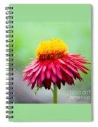 Summer Flower Spiral Notebook