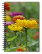 Summer Flowers Spiral Notebook
