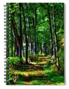 Summer Forest In Ohio Spiral Notebook