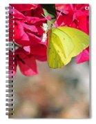 Summer Garden II In Watercolor Spiral Notebook
