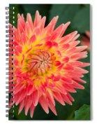 Summer Garden Joy Spiral Notebook