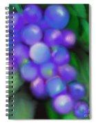 Summer Grape Spiral Notebook